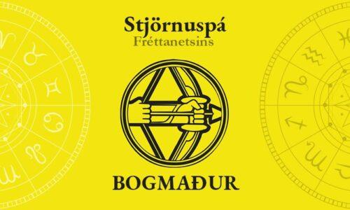 Bogmaður: Tímabundin óvissa – Tímamót – Ást og barneignir á sjóndeildarhringnum